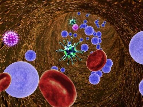Virussen in het lichaam