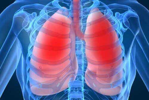 10 tekenen dat je longen het op gaan geven