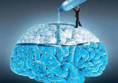 Water drinken heeft invloed op de hersenen