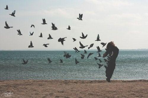 Wegvliegende vogels