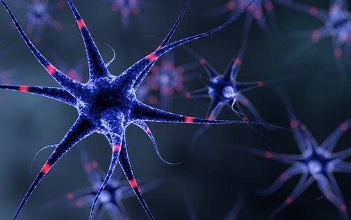 6 trucs om je zenuwstelsel te versterken
