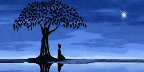 Meditatie bij boom