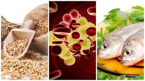 Beheers je cholesterol: voeg deze 7 voedingsmiddelen toe aan je dieet.