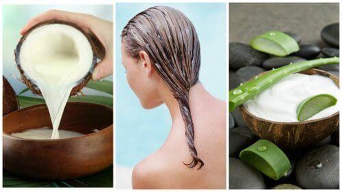 Haarverlies behandelen met aloëvera en kokosmelk