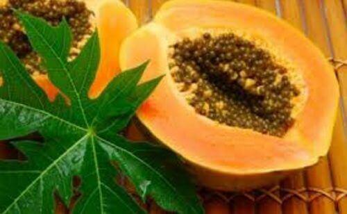13 voordelen van papajabladeren