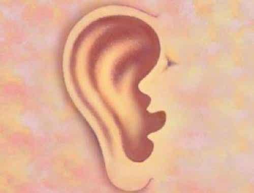 Wat zeggen je oren over jou?