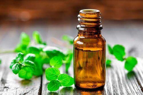 Oliën om artritis mee te behandelen muntolie