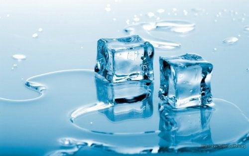 Borsten ondersteunen en verstevigen met koud water