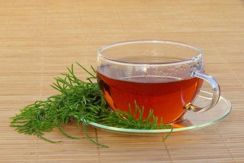 Paardenstaart thee