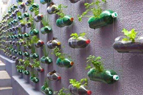 Recyclen tot een groene muur