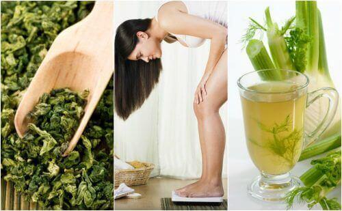 Gemakkelijk gewicht verliezen met 5 geneeskrachtige planten
