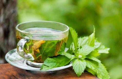 Behandel constipatie met groene thee