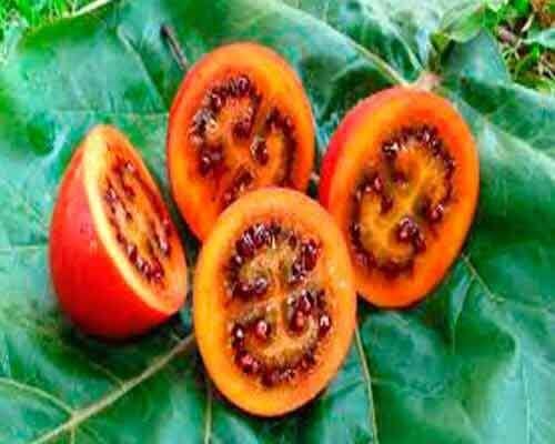 4 exotische groente- en fruitsoorten die je nog niet kent
