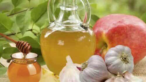 De talloze voordelen van een mengsel van knoflook en honing