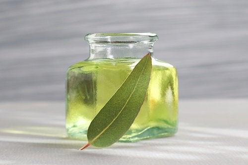 Eucalyptusolie om de symptomen van allergieën te verlichten