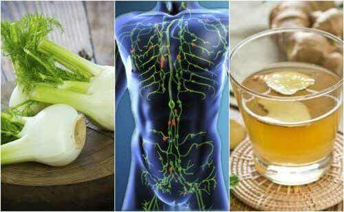 Reinig je lymfatisch systeem met 6 natuurlijke remedies!