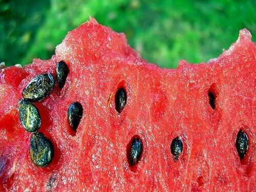 Aftreksel van de zaden van watermeloen