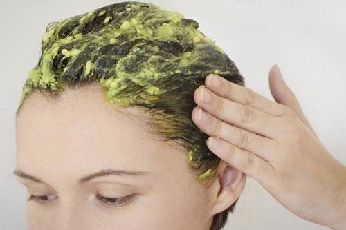 Natuurlijke remedies met avocadotegen roos