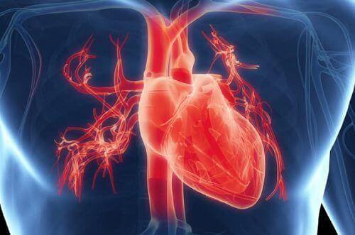 Het gebroken hartsyndroom