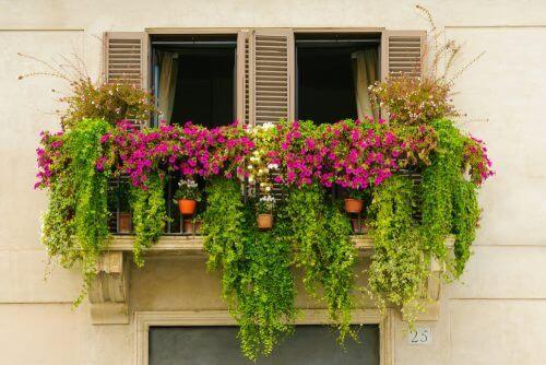 Een minituin op het balkon