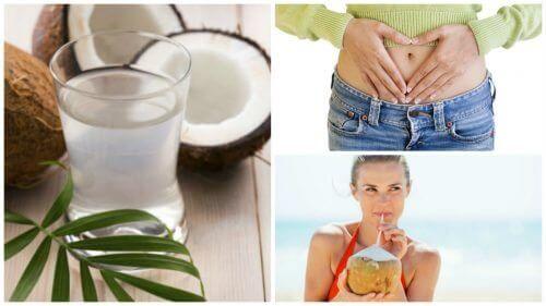 Tien voordelen van het drinken van kokoswater