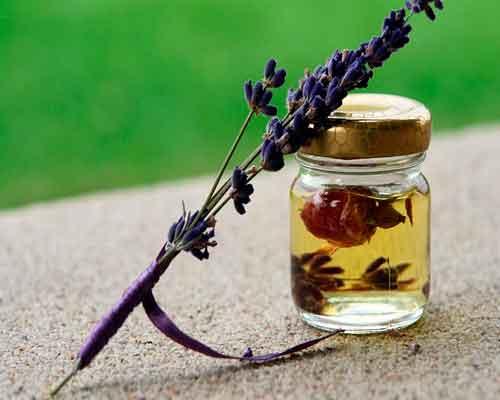Etherische lavendelolie voor je gezondheid