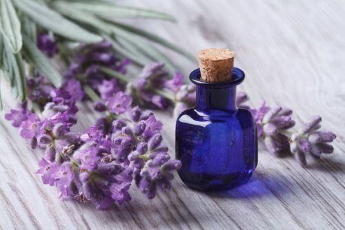 Lavendelolie is een van de etherische oliën voor je schoonheid