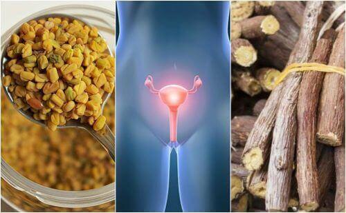 5 natuurlijke remediesvoor polycysteus-ovariumsyndroom