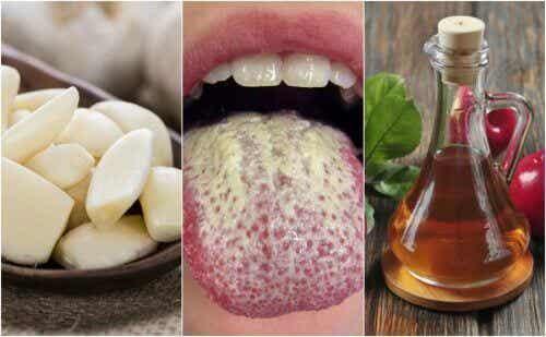 Hoe beheers je Candida Albicans met zes natuurlijke middelen?