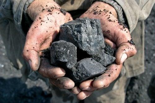 7 fascinerende gebruiksfuncties van houtskool