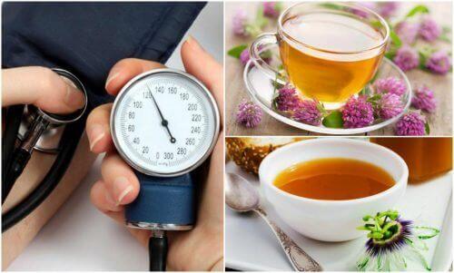 De 6 beste kruiden om je bloeddruk te verlagen