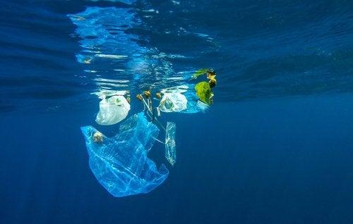 Plastic dat in de oceaan drijft