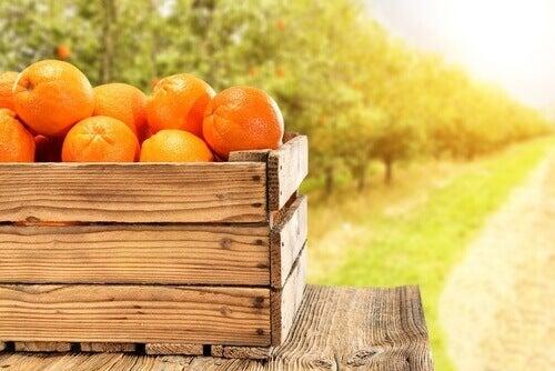 Sinaasappels in een krat