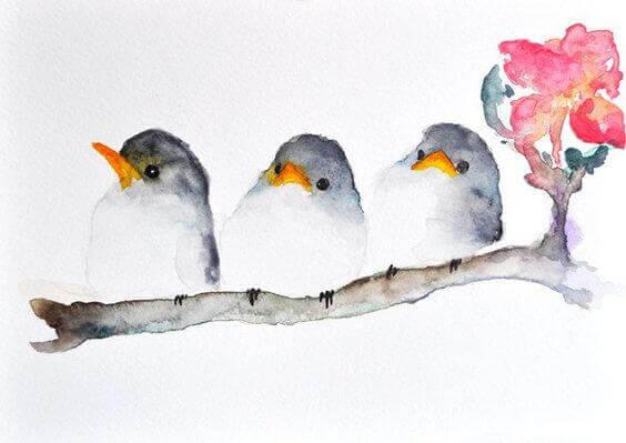 Drie vogels die staan voor drie soorten medeleven