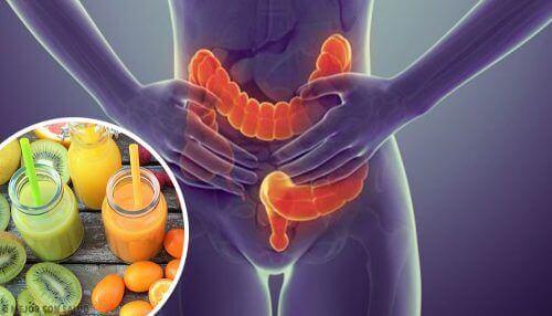 Je dikke darm reinigen: vijf ideale voedingsmiddelen