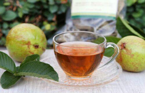 Je bloedsuikerspiegel beheersen met thee van guavebladeren
