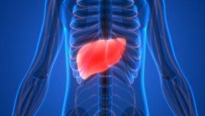 Elf dringende signalen die wijzen op leververgiftiging