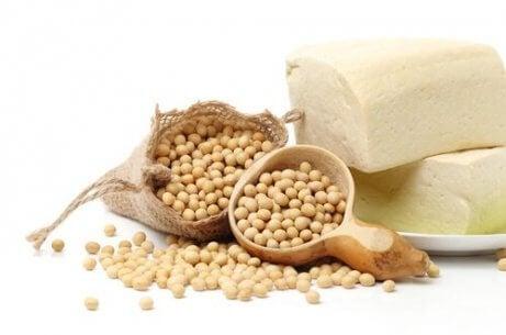 Soja bevat veel proteïne