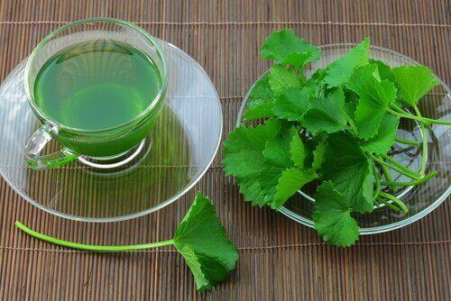Selderijthee is van de soorten thee om je lichaam te ontgiften