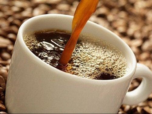 Alles wat je nog niet wist over koffie