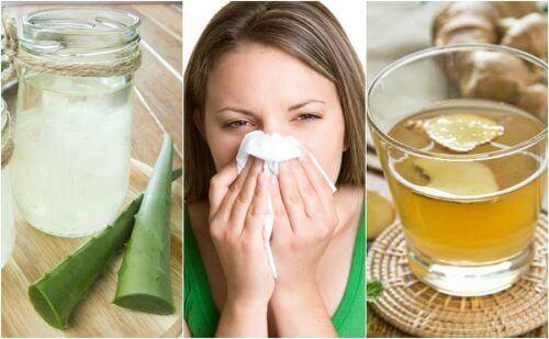 Vijf natuurlijke middelen tegen allergische rhinitis
