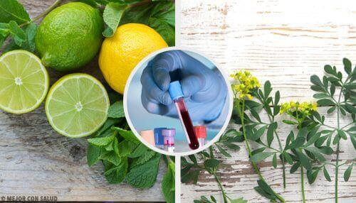 Carrulim: een natuurlijk middel met wijnruit en citroen
