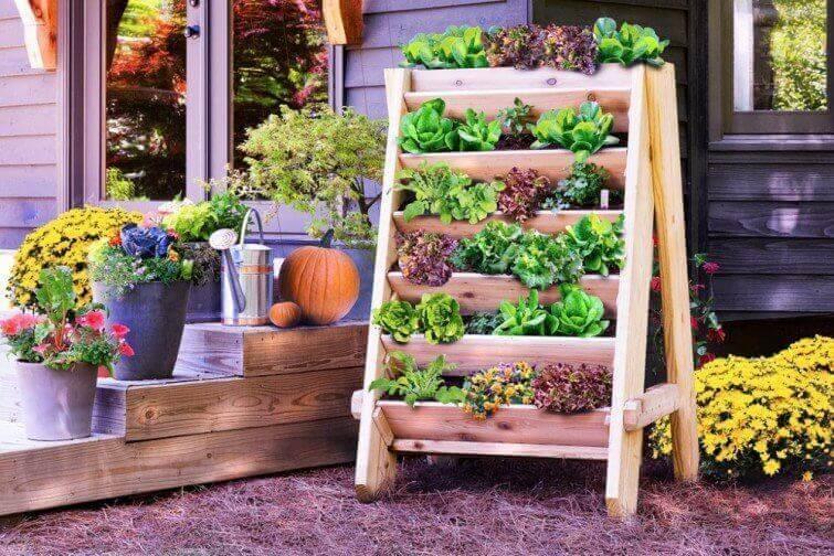Mooie tuin met allemaal plantjes erin