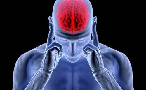 Adrenaline: het activerings-, stress- en hoofdpijnhormoon