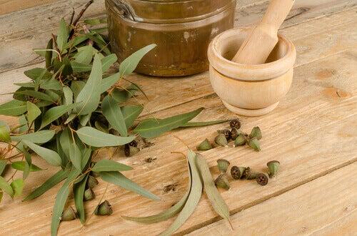 Allergiemiddelen eucalyptus water