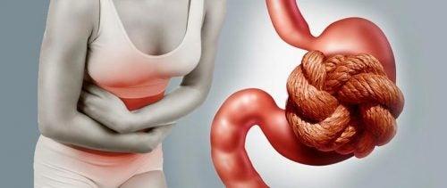 9 vruchten die constipatie bestrijden