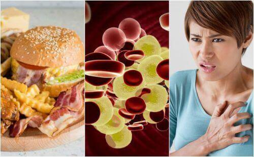 Hoe kun je hoge cholesterolwaarden verlagen?