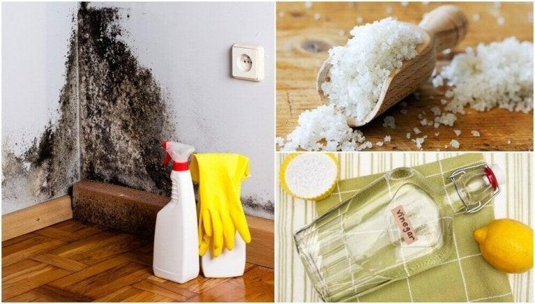 Vochtigheid in huis: 5 manieren om het tegen te gaan
