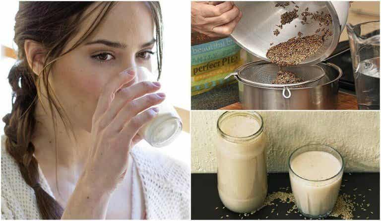 Kanariezaadmelk: wat is het en hoe maak je het?