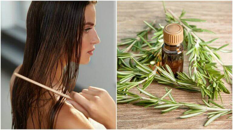 Profiteer van de interessante voordelen van rozemarijn voor je haar